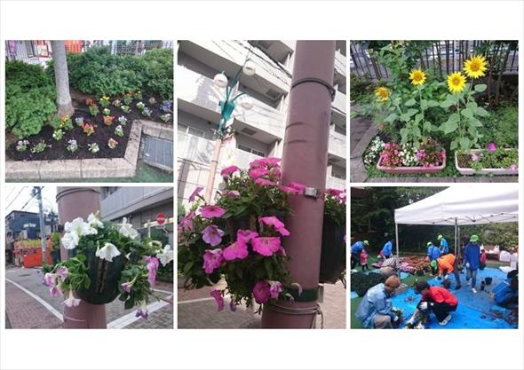 ハンギングバスケットや自主管理花壇によって街に花を増やしています