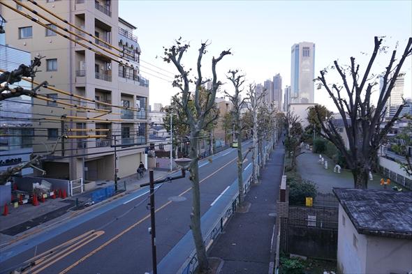 水道道路の先には、西新宿のビル群が臨める。