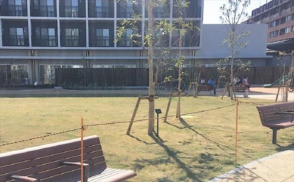芝生に沿っていくつかベンチが置かれています。