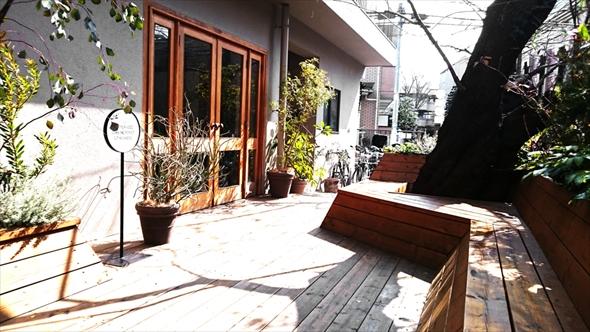 晴れた日は、以前からここにあった樹齢50年を超える桜の木を眺めながらテラスでもコーヒーを楽しめます。
