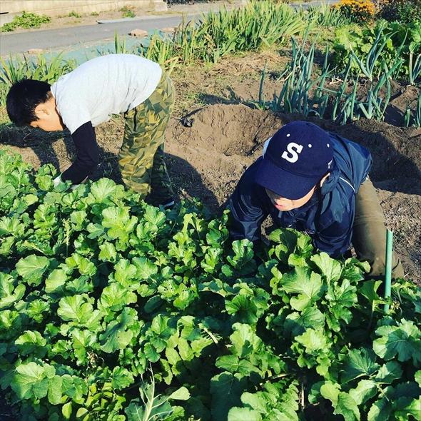 2019年秋には、仲間づくり活動の中で縁がつながった長野県伊那市へ友達家族に声をかけて農泊ツアーを実施。着実に仲間づくりとコンセプトにつながる活動を続けてきました!